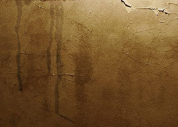 Stains on interior ceilings and walls; mold or mildew growth.