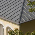 Roof Panel - Dexter / Vmzinc