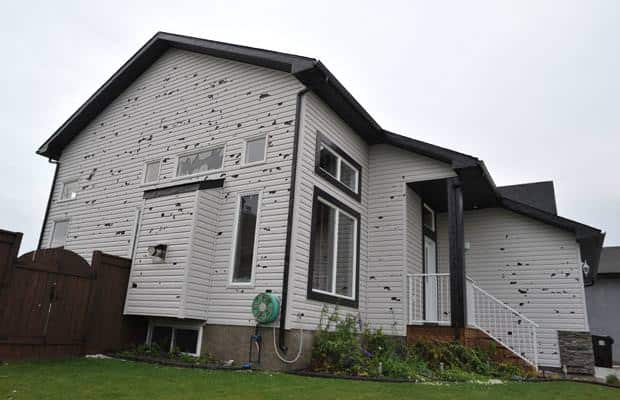 Siding Hail Damage