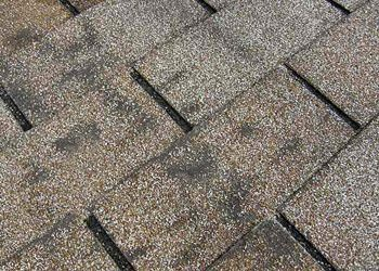 "Dark, ""dirty-looking"" areas on your roof."