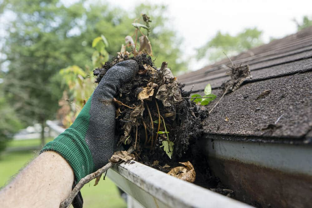 Clear the gutters and downspouts